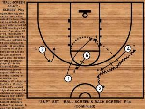 Ballscreen and Backscreen  1 of 3